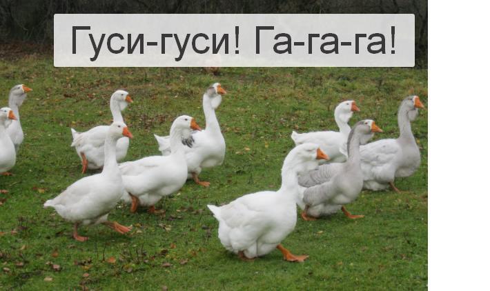 """Подвижная игра """"Гуси-лебеди"""" для детей 5-6 лет"""